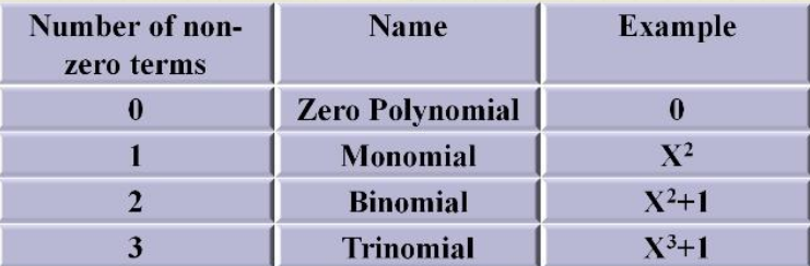 Types of polynomials on the basis of the number of terms