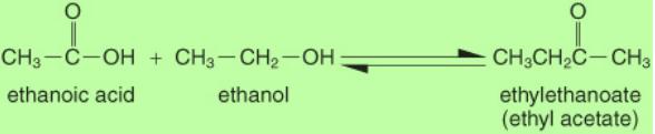 Ethanol and Ethanoic Acid