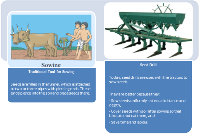 Agricultural Implements used for Sowing