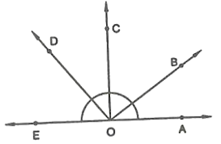 Pairs of adjacent angles