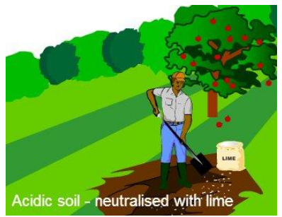 Soil treatment