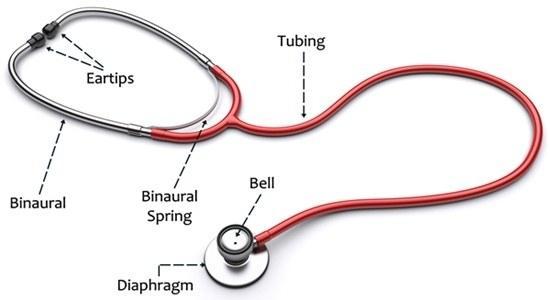 Figure 6 Stethoscope