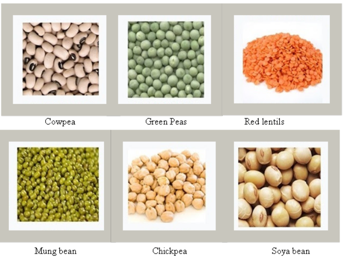 Different types of Crops