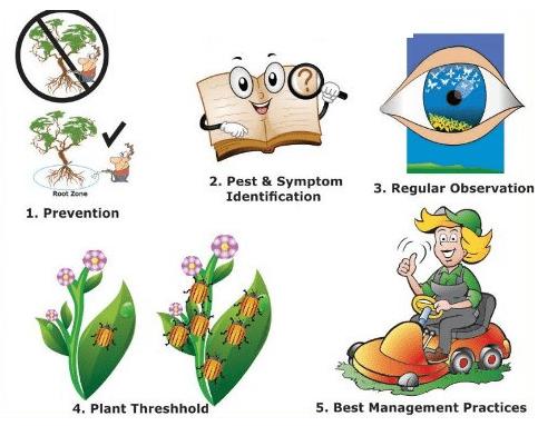 Pest Management