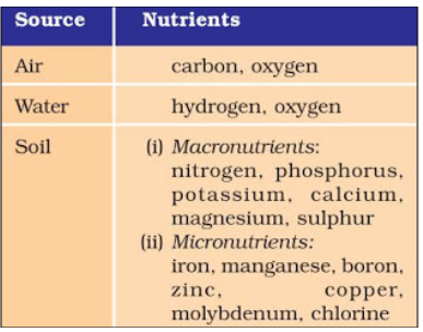 Nutrients provided by air, water and soil