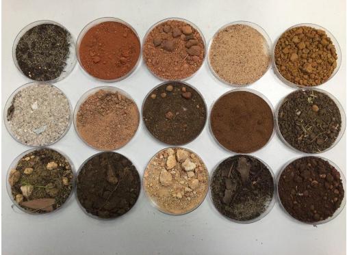 Soils have different Colors
