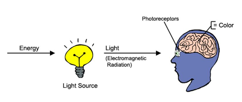 Figure 1 Light makes things Visible