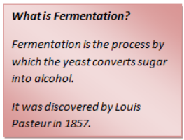 What is Fermentation?