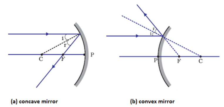 appear to diverge in case of convex mirror