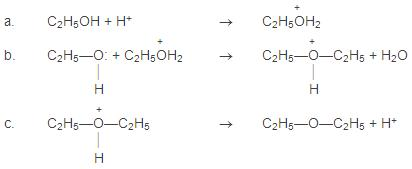 oxonium-ion-formed-gives-ether-by-a-loss-of-a-proton