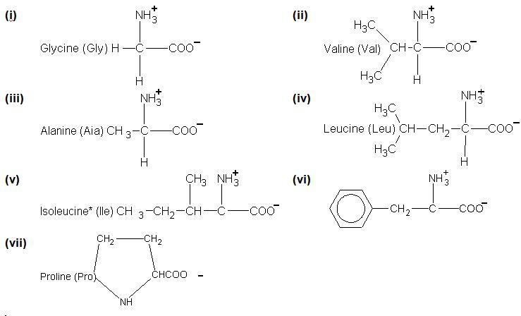 1726_amino acids.JPG