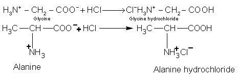 771_acid.JPG