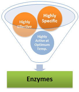 Characteristic of Enzyme Catalysis