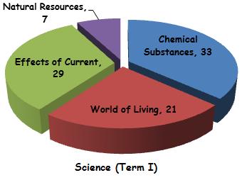 Science Syllabus Term I