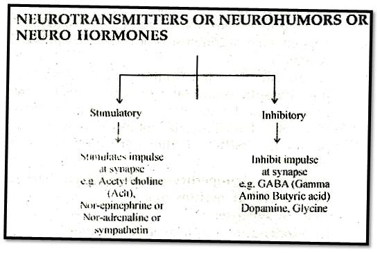 Neuro Hormones