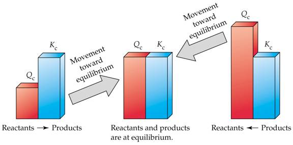 Physical Chemistry- Revision Notes on Equilibrium for IIT JEE