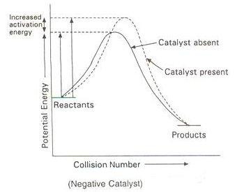 Aactivation energy is increased in presence of a negative catalyst.