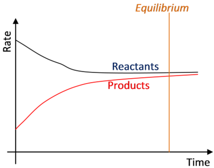At equilibrium both the rates become equal.