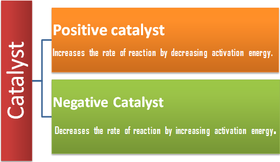 Positive and negative catalysts.