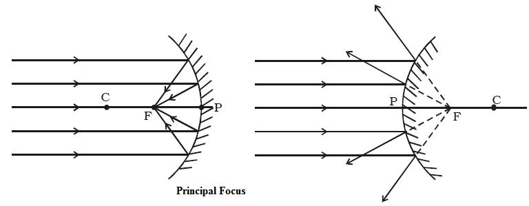 Principal Focus