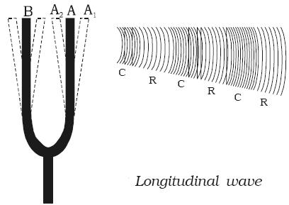 Longitudinal Wave in Tuning Fork
