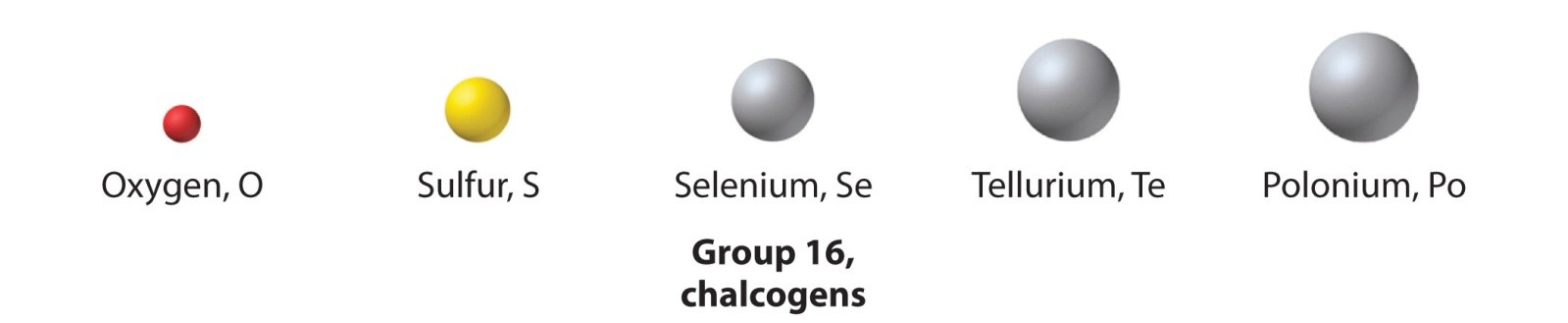 Elements of group 16