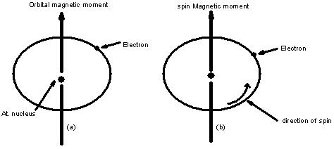 The magnetic moment
