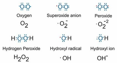 Different species of Oxygen with their oxidation states