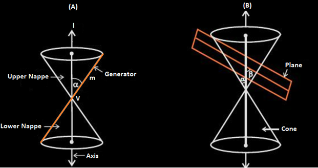 Terms used in Conic Sections